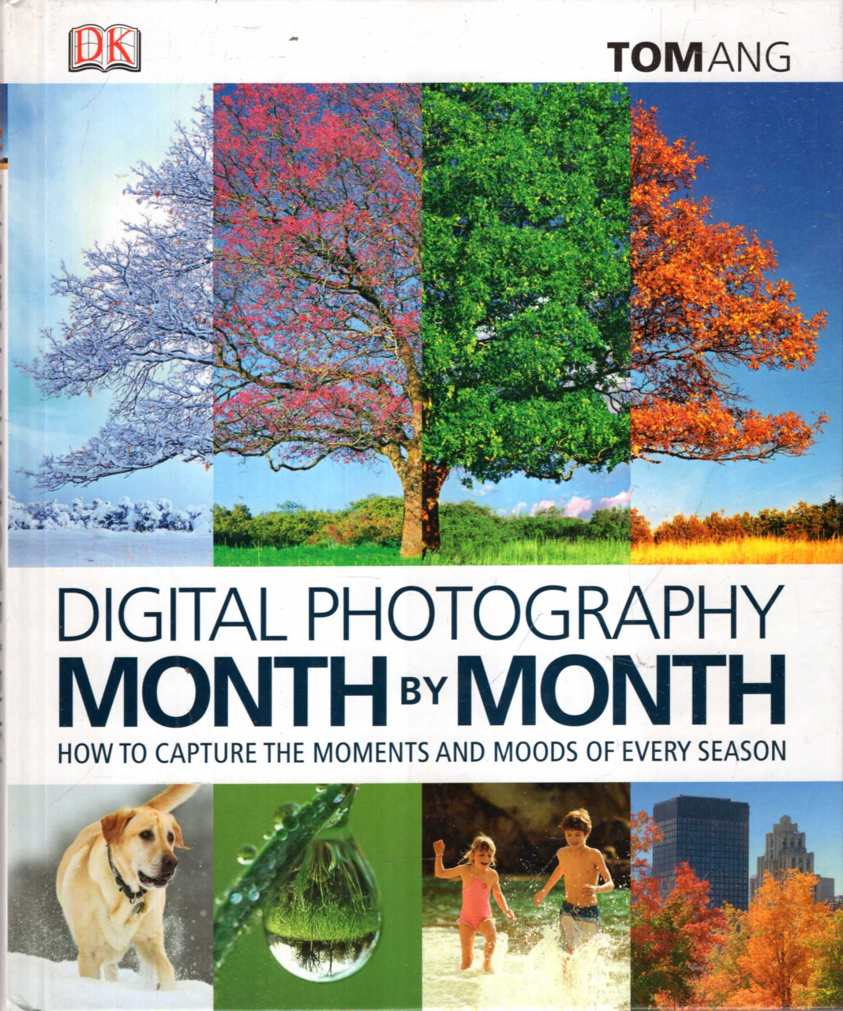Image for Digital Photography Month by Month : How to Capture Inspirational Images in Every Season
