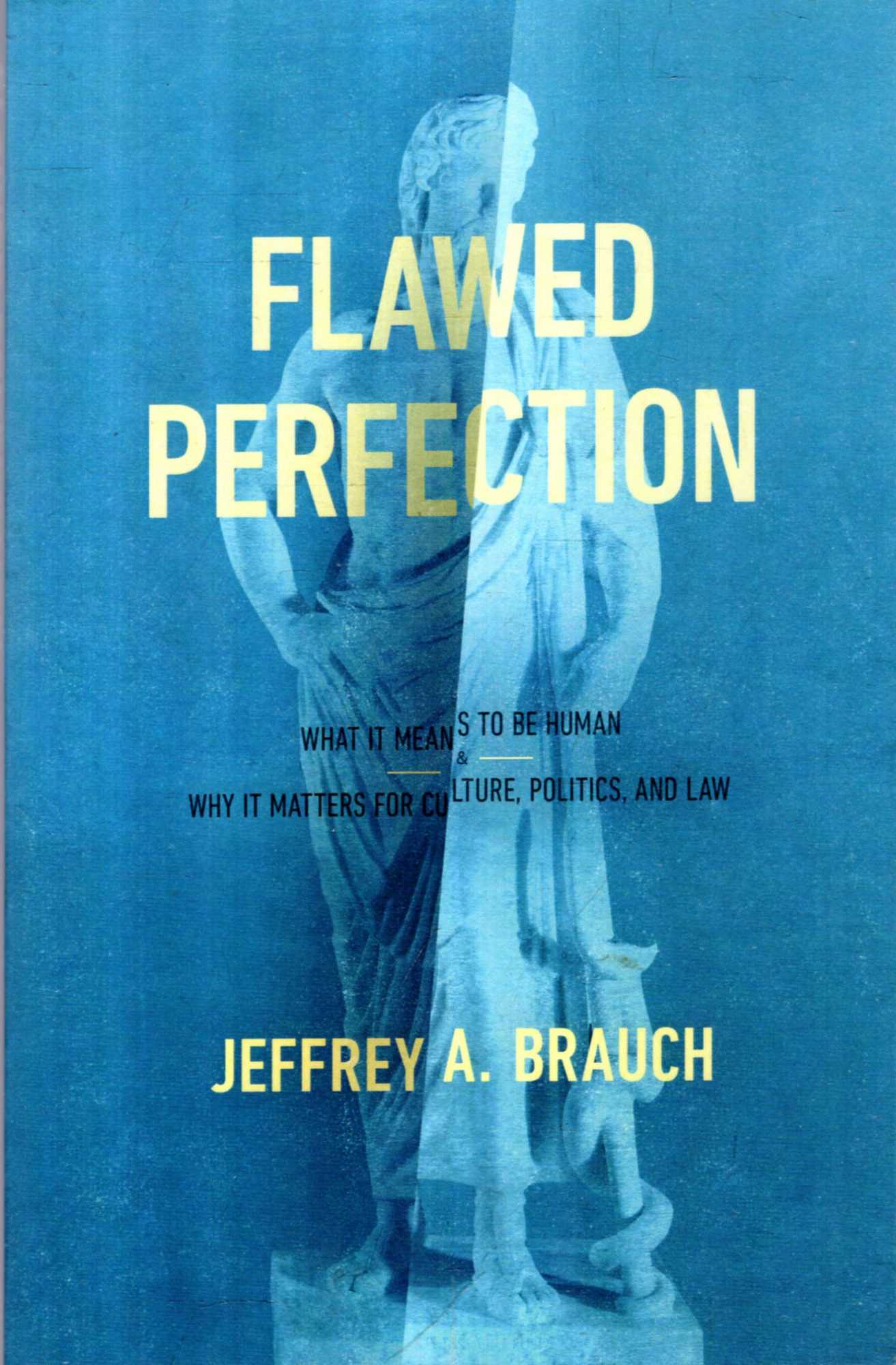 Image for Flawed Perfection  : What It Means to Be Human and Why It Matters for Culture, Politics, and Law