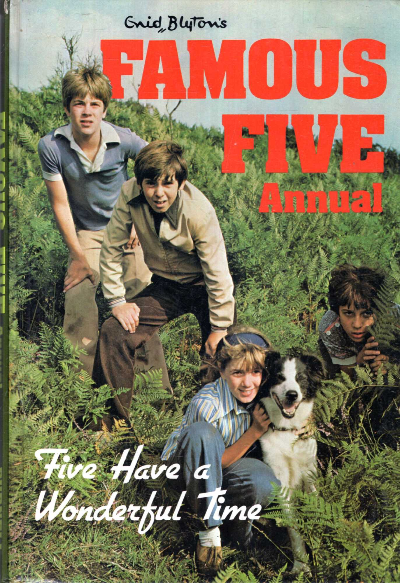 Image for Enid Blyton's Famous Five Annual : Five Have a Wonderful Time