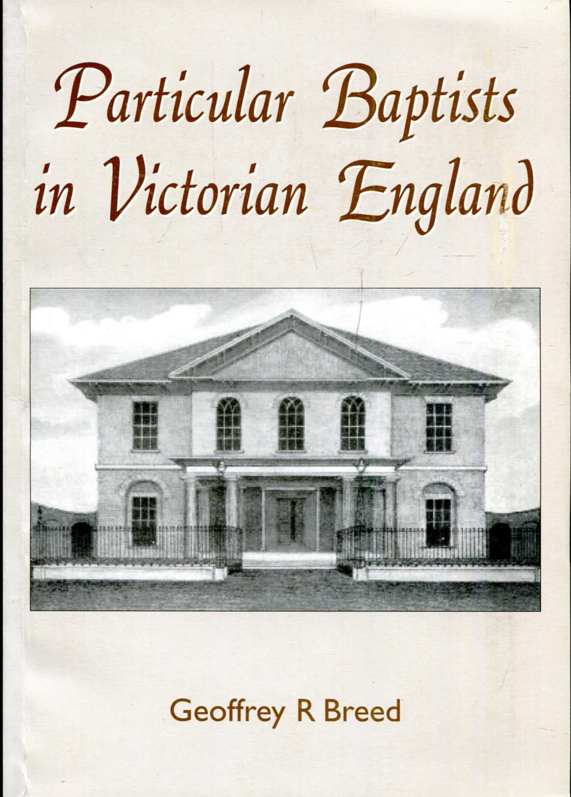 Image for Particular Baptists in Victorian England