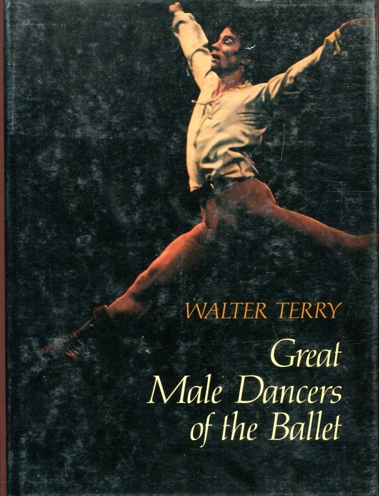 Image for Great Male Dancers of the Ballet