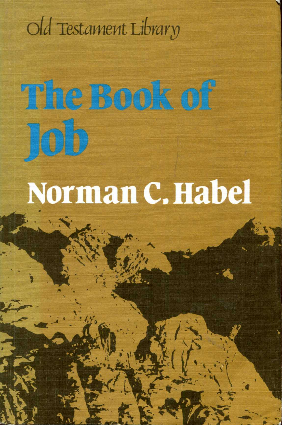 Image for The Book of Job: A Commentary