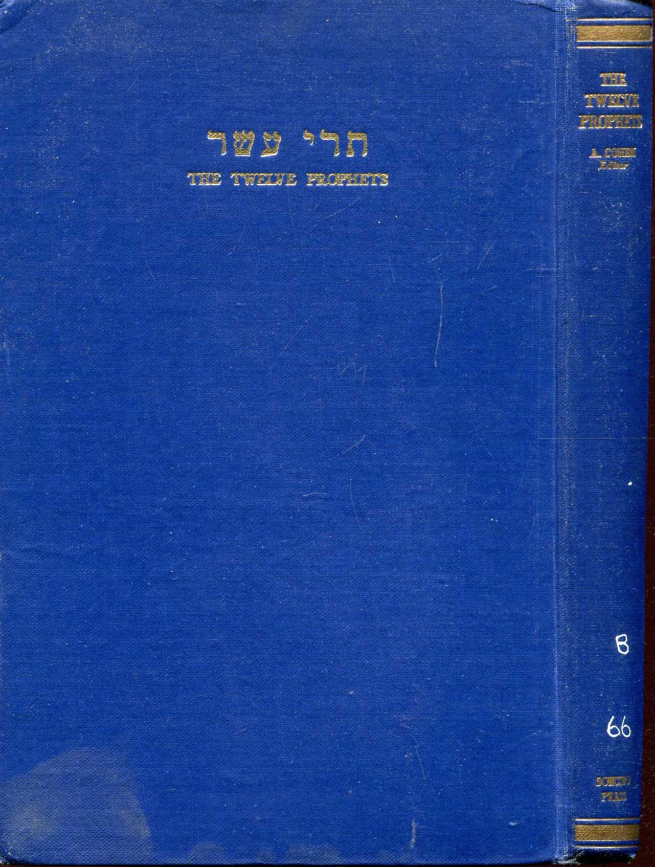 Image for The Twelve Prophets : Hebrew text, English translation and commentary
