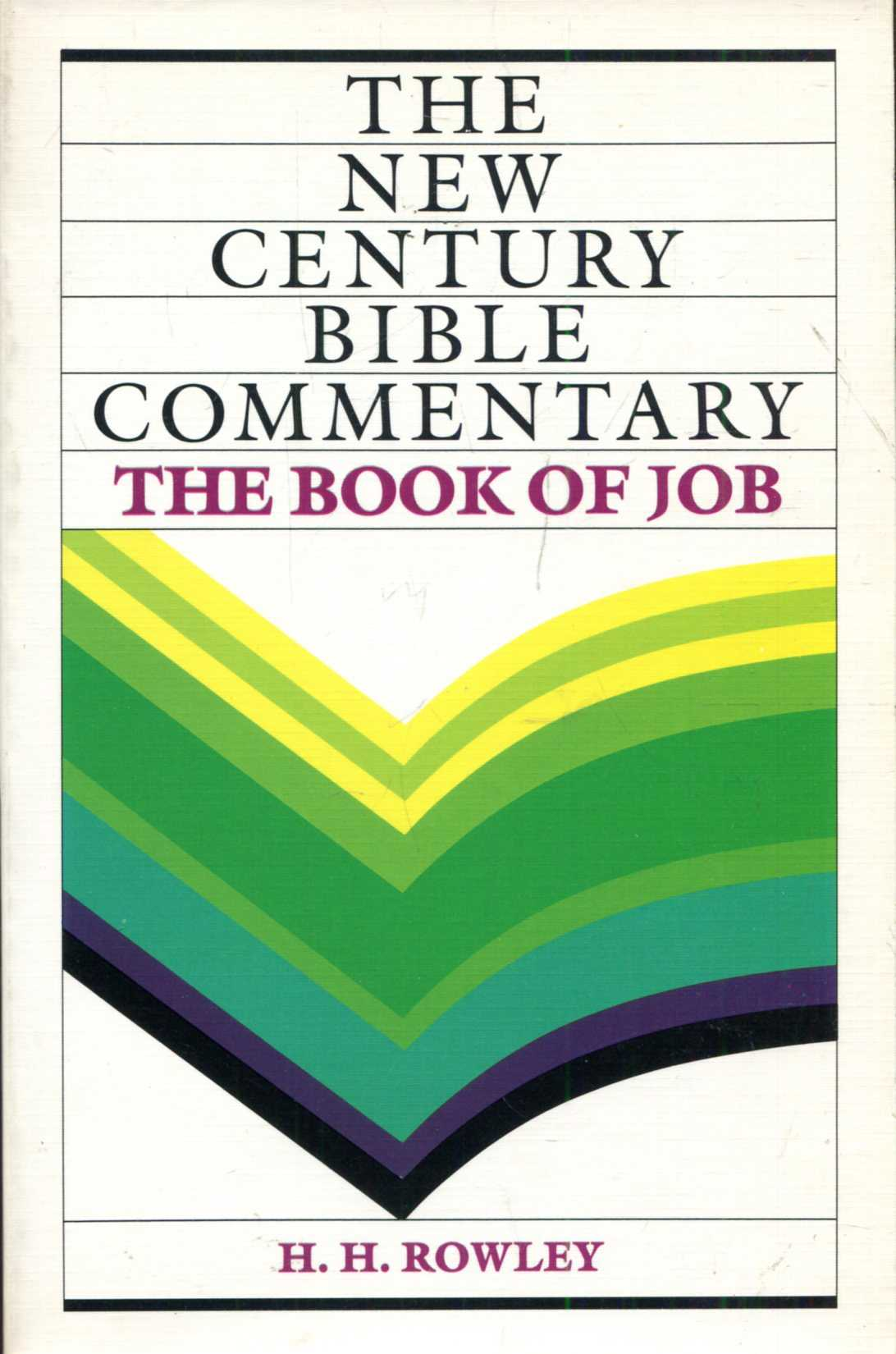 Image for New Century Bible Commentary : The Book Of Job