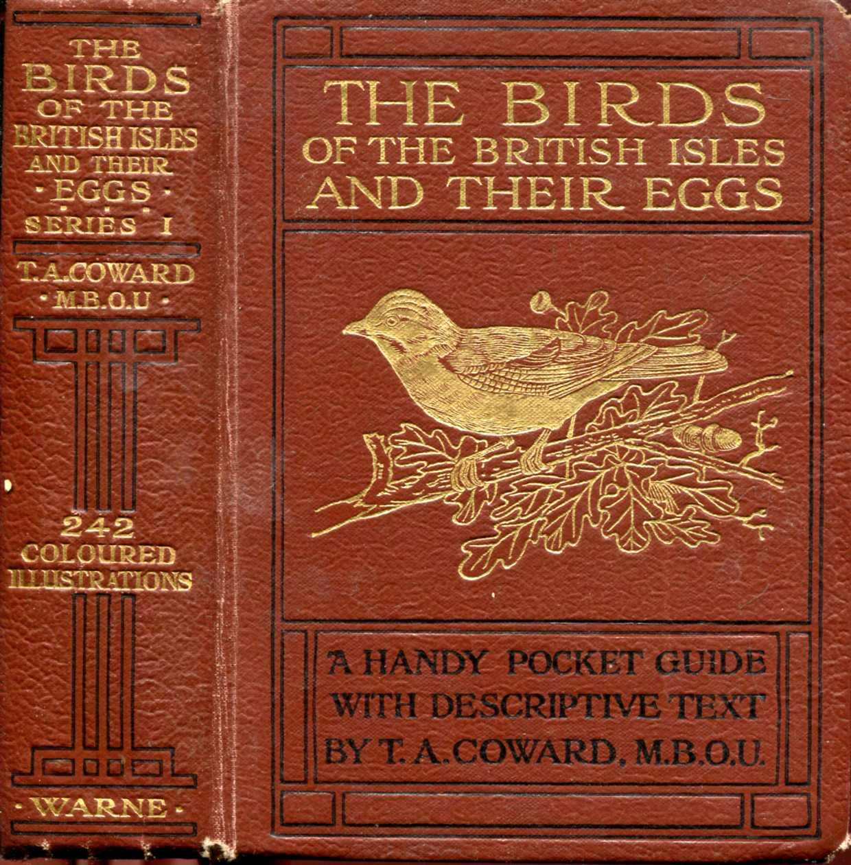 Image for The Birds of the British Isles and their Eggs, First Series, Families Corvidae to Sulidae