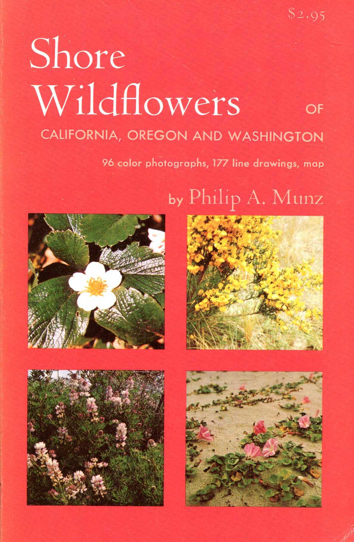 Image for Shore Wildflowers of California, Oregon and Washington