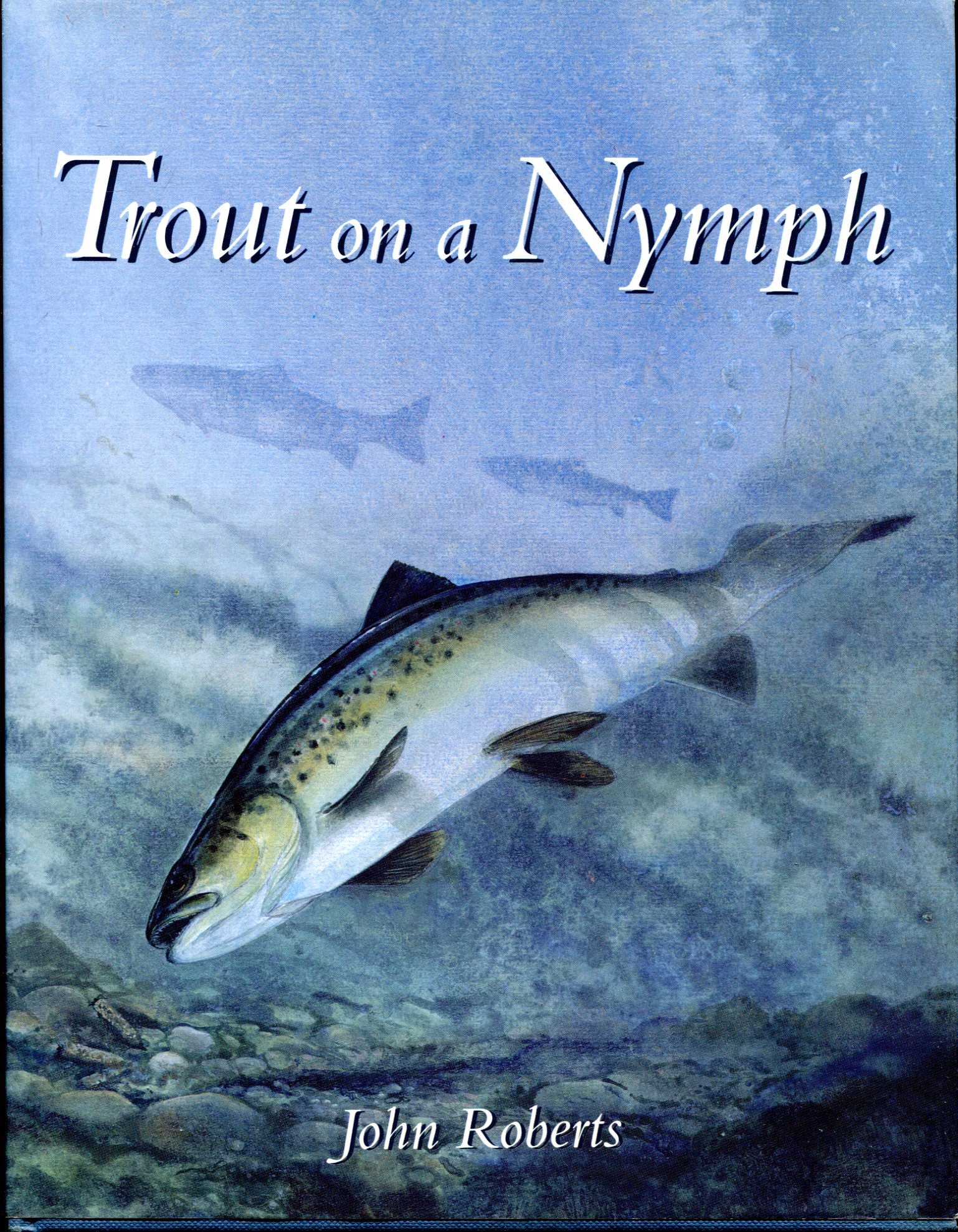 Image for Trout on a Nymph
