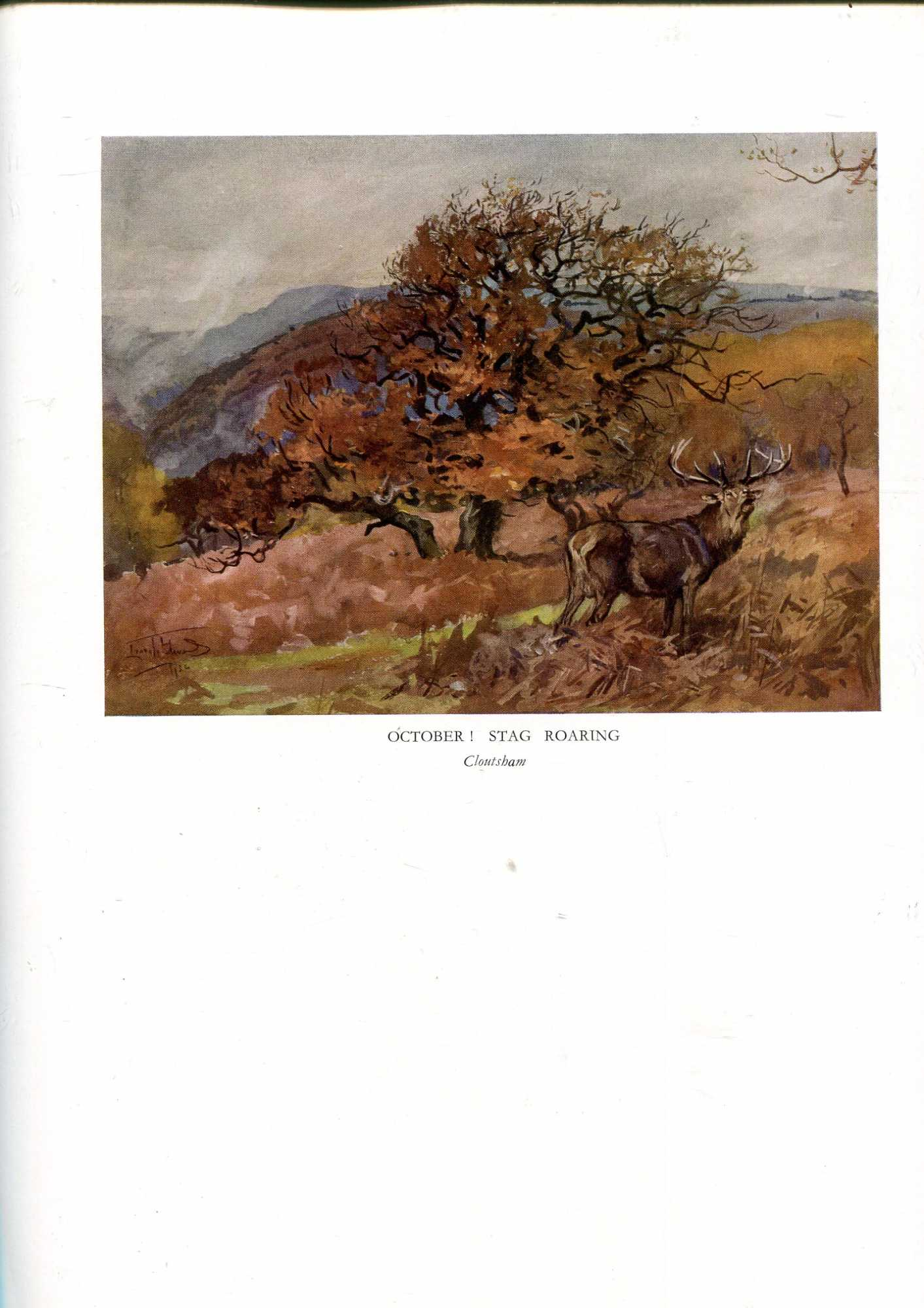 Image for The Devon and Somerset Hounds 1907-1936