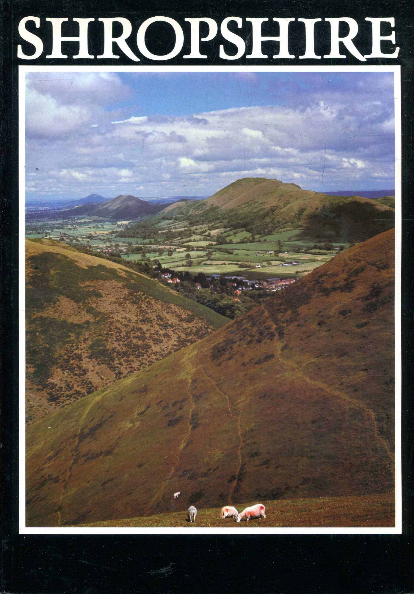 Image for Shropshire County Guide