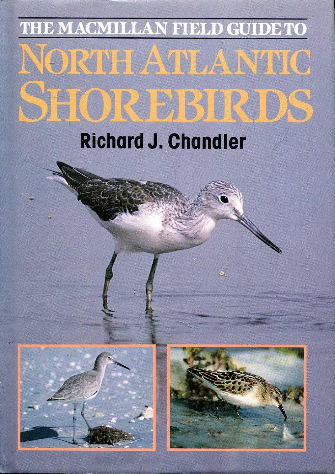 Image for North Atlantic Shore Birds - A photographic Guide to the Waders of Western Europe & Eastern North America