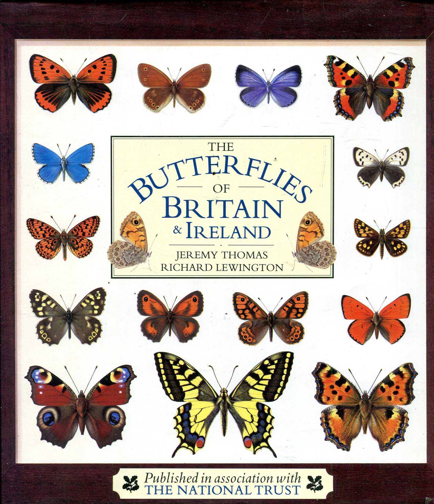 Image for The Butterflies of Britain and Ireland