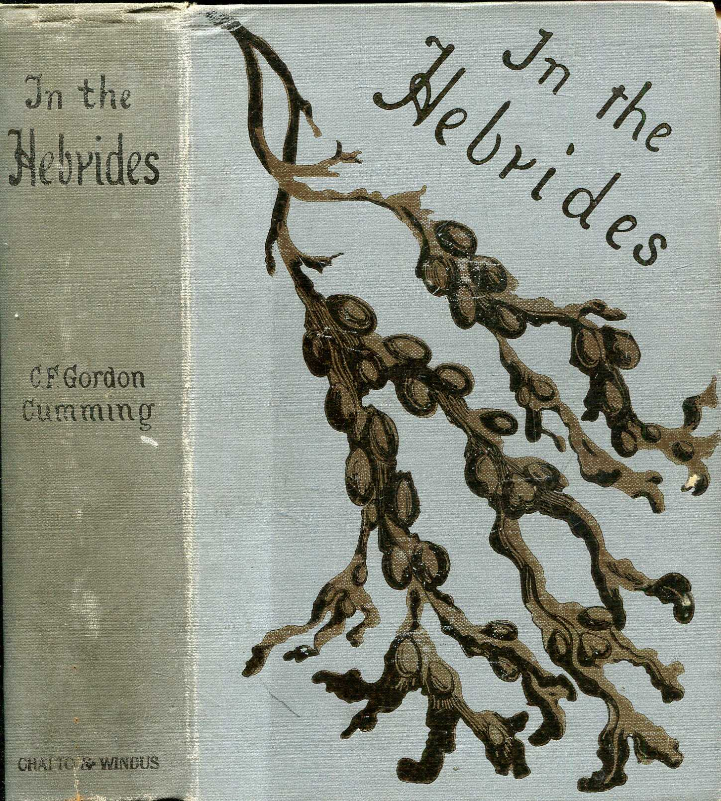 Image for In the Hebrides